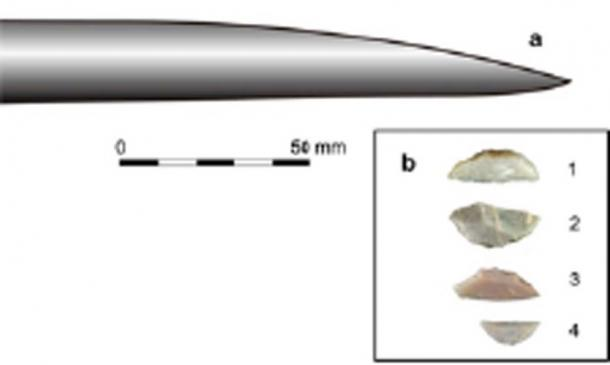 Tip of a Schöningen spear (a) and representative Uluzzian backed pieces, used by modern humans, from Grotta del Cavallo (b). (Nature Ecology & Evolution)