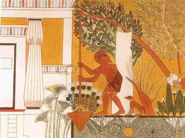 Tomb painting depicting a gardener using a shaduf. Tomb of the Royal Sculptor Ipuy, Deir el-Medina. Dynasty 19, reign of Rameses II, 1279-1213 BCE