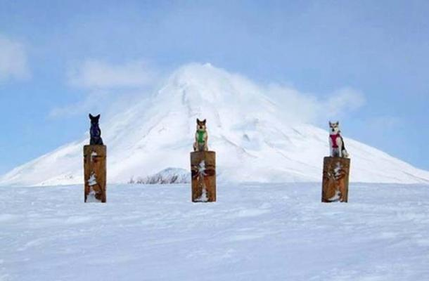 Totem poles at Kamchatka. (Alistair Coombs)