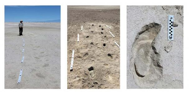 Tracking the footprints. Matthew Bennett, Bournemouth University, Author provided