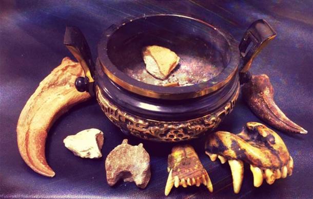 Traditional Chinese Medicine (Legendz Collective)
