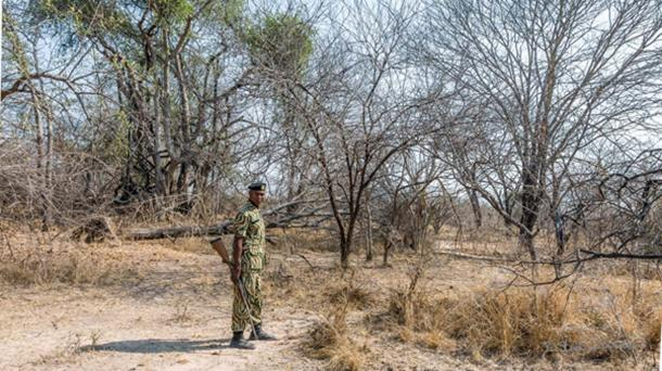 Trail guard, Kafue National Park (dosRemedios, S / CC BY ND 2.0)
