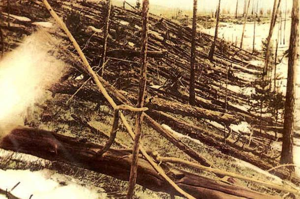 Tunguska meteoroid impact, a fraction of the Younger Dryas event. Trees were knocked down and burned over hundreds of square kilometres