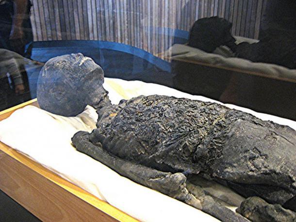 Tutankhamun Mummy Replica, Upper Body and Head.