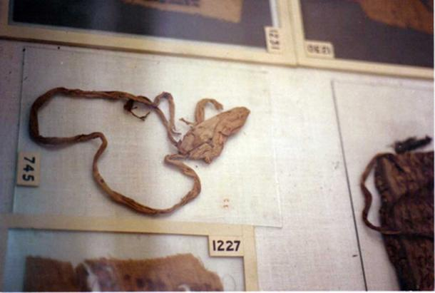 Tutankhamun's condom, identified via DNA residue.