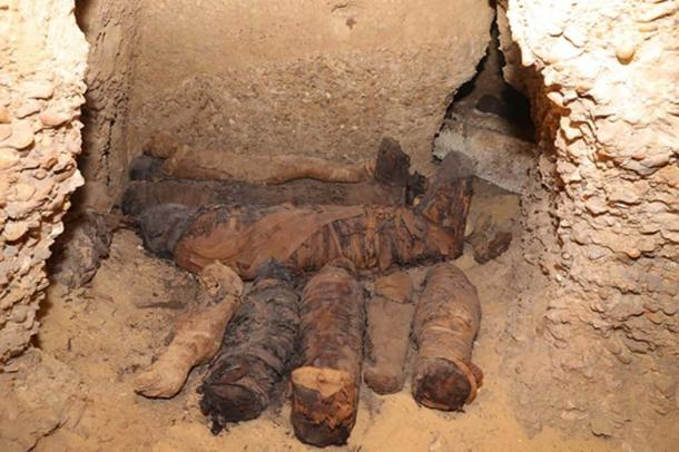 Twelve of the mummies were of children and infants