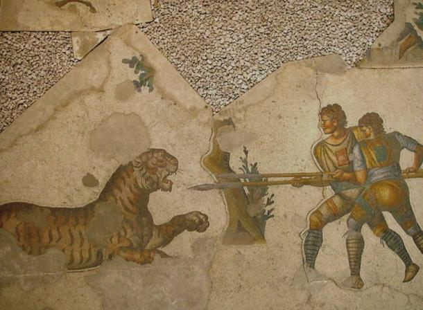 Two Venatores (those who made a career out of fighting in arena animal hunts) fighting a tiger. Floor mosaic in Great Palace of Constantinople (Istanbul), 5th century.