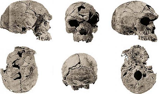 Two adults and a child dating from 160,000 years ago, th oldest known fossils of modern humans discovered in Herto, Ethiopia. (Image: Bradshaw Foundation)