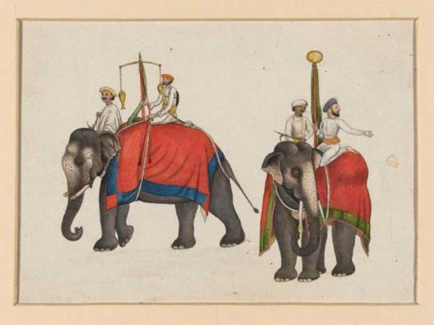 Two elephants carrying the fish and sun insignia of Mughal sovereignty. (Public Domain)