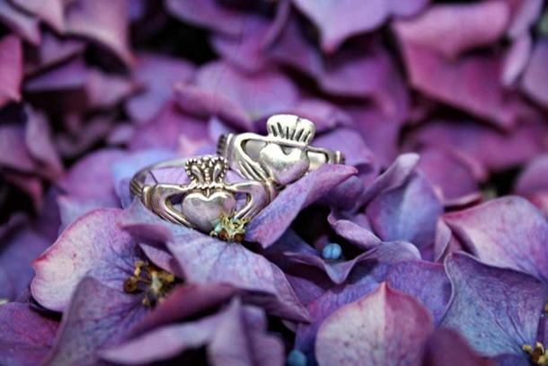 Two silver Claddagh Rings on flowers.