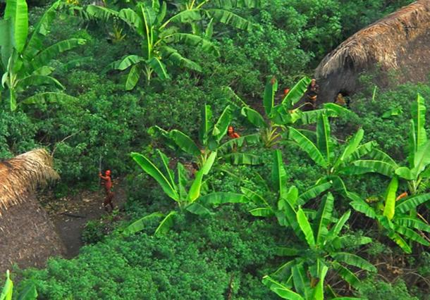 Uncontacted indigenous tribe in the Brazil defending their territory. (Arthur to / CC BY-SA 2.0)