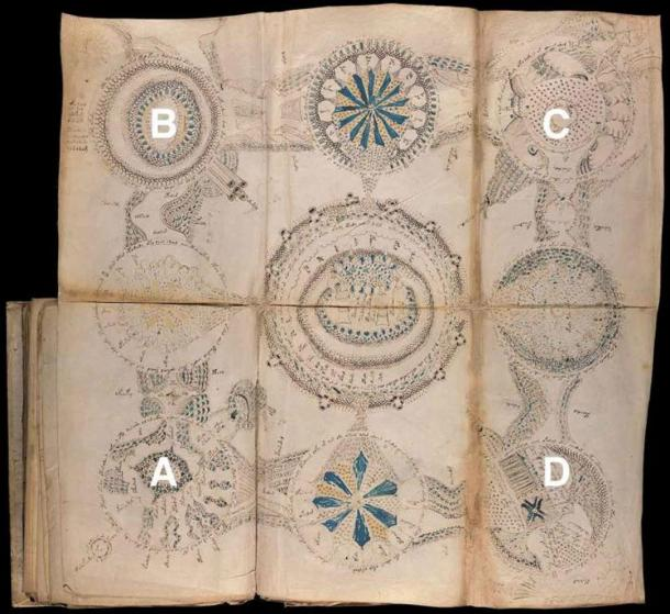 Unfolded map from the Voynich Manuscript