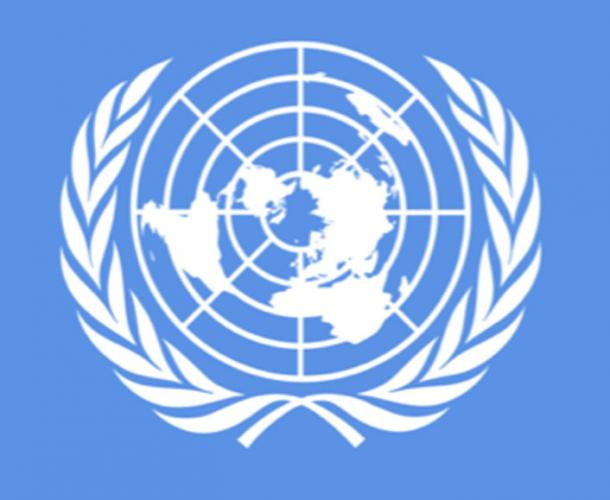 The United Nations Flag is an equidistant projection as seen from the North Pole.