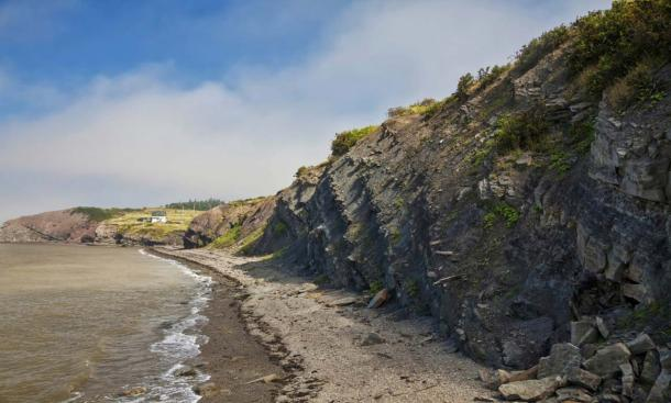 Joggins Fossil Cliffs (Fotolia)
