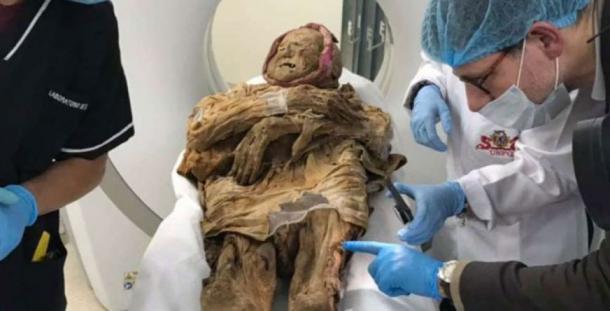 Examining the mummy of Guano. (El Tiempo)