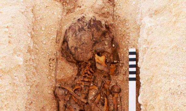 A juvenile burial under excavation at the North Tombs Cemetery, Amarna, Egypt. Photograph: Mary Shepperson/Courtesy of The Amarna Project