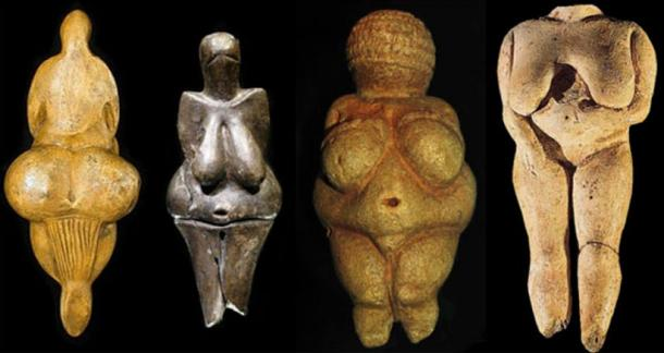 A collection of Venus figures found across Europe