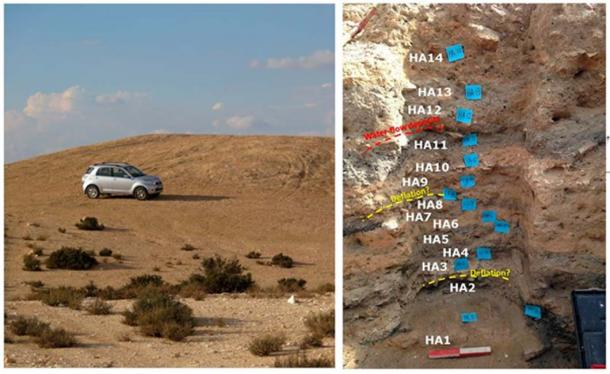 (Left) View of trash mound M1 of Elusa (Photo by G.B.-O.); (Right) 1.3-m-deep east section in Trench A, mound M1, with its sequence of alternating layers of dark and light color sediment. (Image: Guy Bar-Oz et al / PNAS)