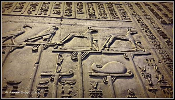 Wepwawet figures stand proud atop royal standards along with other deities in this relief at the Kom Ombo Temple. From the First Dynasty onwards, an image of a rearing cobra ('uraeus') was placed in front of the animal.