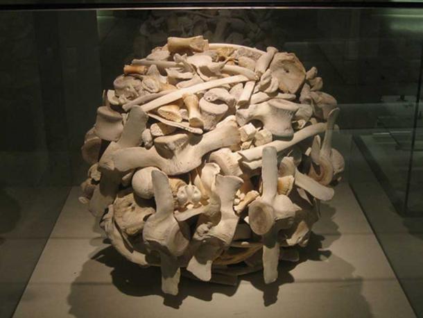 Whale bones. (CC BY-NC-ND 2.0)