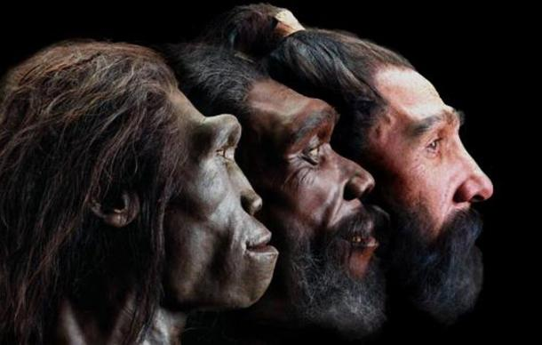 White Skin Developed in Europe Only as Recently as 8,000 Years Ago