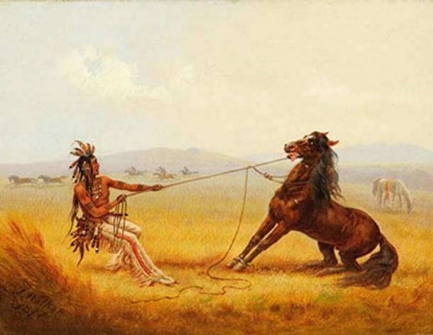 'Wild horse catchers' by James Walker