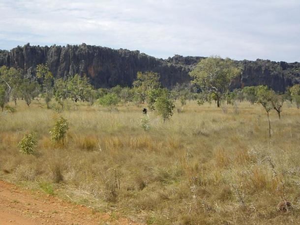 The fragment was dug up in the 1990s in Windjana Gorge National Park, Western Australia.