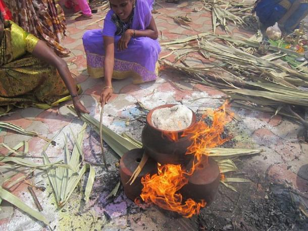 Women boiling the rice in a mud pot at a Pongal festival. (Esakkiammal stalin 96 / CC BY-SA 4.0)