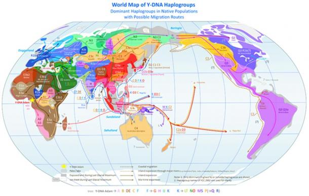 Time of haplogroup growth in different parts of the world.