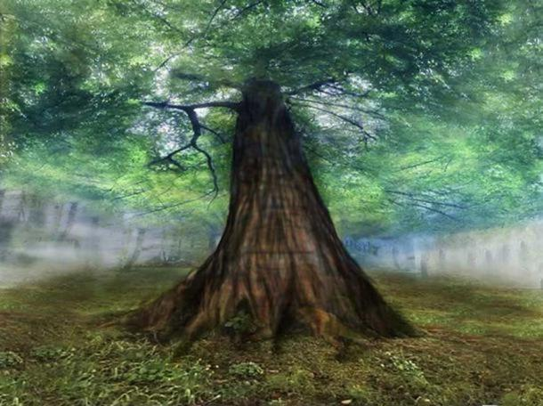 Yggdrasil, the immense mythical tree that connects the nine worlds in Norse cosmology
