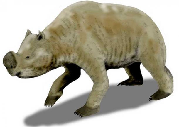 Zygomaturus trilobus