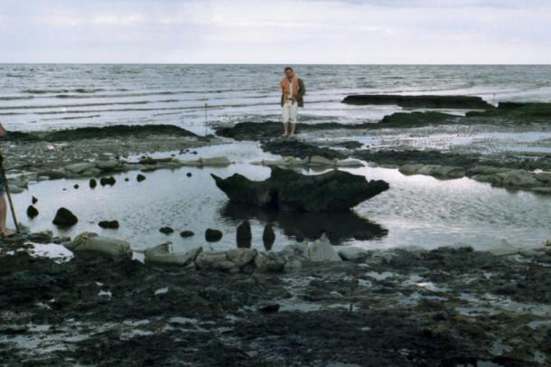 "A view of Seahenge several months after discovery by which time archaeologists had already removed some of the timber stakes and sawn a chunk out of the central ""altar,"" which comprised the inverted trunk of an oak tree. (Picture Esk / CC BY-NC 2.0)"