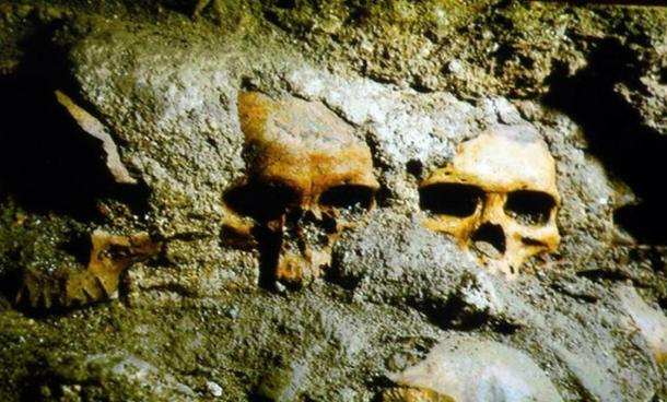 In 2015 additional skulls were discovered at the Templo Mayor complex in Mexico.