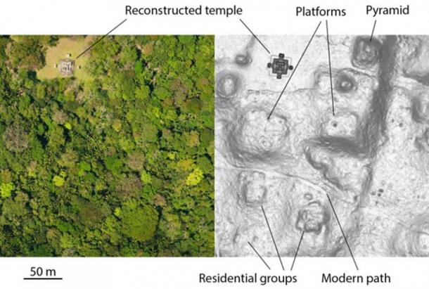 On the left is an aerial image of an area of Ceibal. On the right is the same area, as mapped by LiDAR. Credit: Courtesy of Takeshi Inomata/University of Arizona