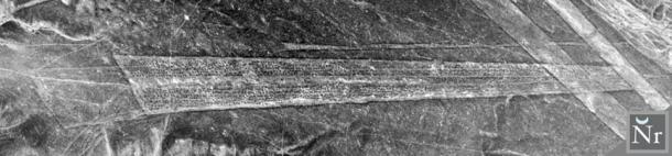 Figure 1. The original aerial photograph of the Socos Pampa trapezoid with its rows of stone heaps located within the Nasca Lines. (Photo Copyright South American Pictures 1978)