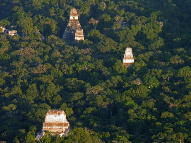 An aerial view of some of Tikal's structures