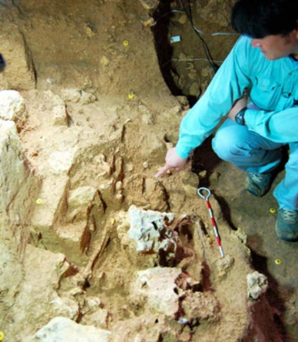 Ancient human remains found at the Sakitari-do cave site in Nanjo, Okinawa Prefecture