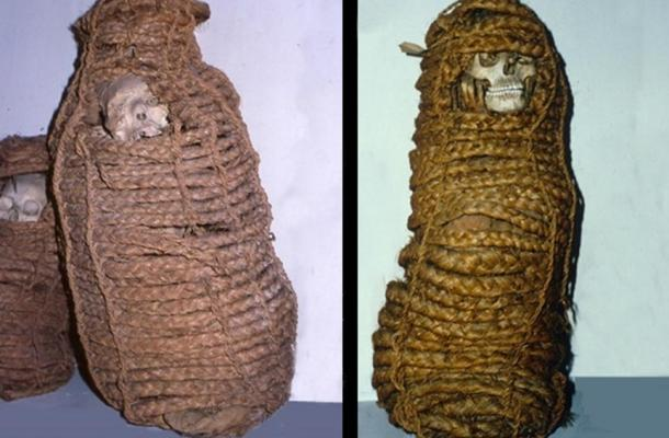 The ancient mummy [right] was a woman who died in the 11th century in Peru. Her gut revealed antibiotic-resistant genes. Altogether 11 such preserved mummies were in the museum collection.