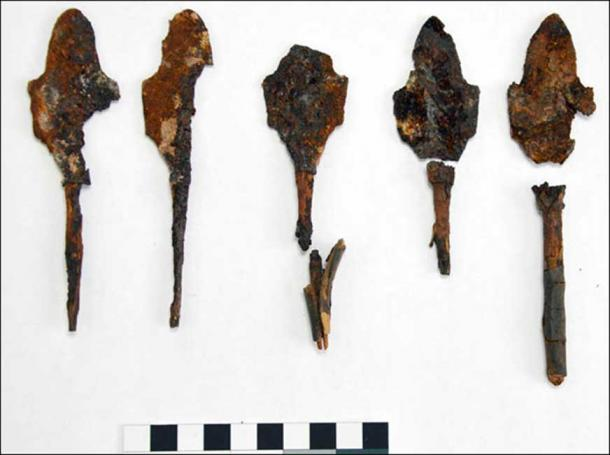 Judging by the shape of the arrow heads, I would say that the owner was a warrior.' Pictures: