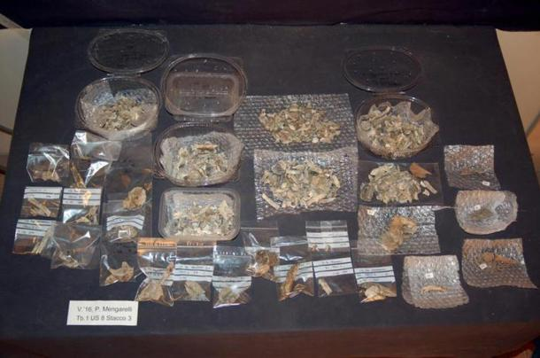 Some of the artifacts uncovered at the tomb.