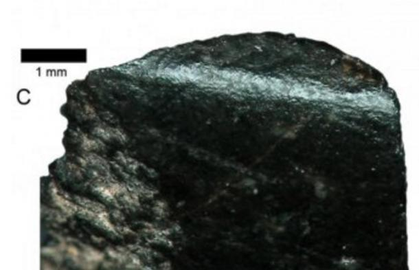 World's oldest axe fragment, seen here under a microscope, is the size of a thumbnail.