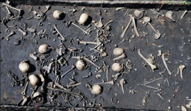 Photograph of the battlefield finds layer. Credit: Antiquity Publications Ltd. / Uhlig et al., (2019), photograph by S. Sauer