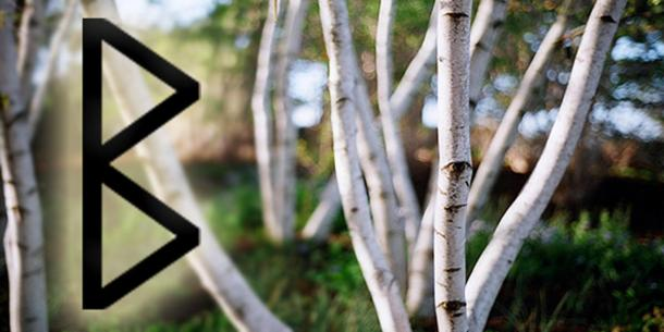 'Berkana' rune and birch trees