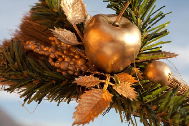 Christmas tree has its roots in ancient customs | Ancient Origins