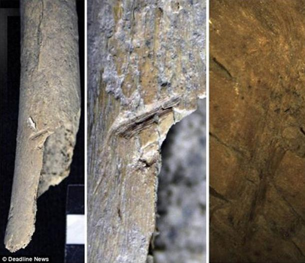 Archaeologists examining thousands of bone fragments from the sites at Orkney found evidence which suggests bodies were hacked apart and had the flesh removed, before they were buried.