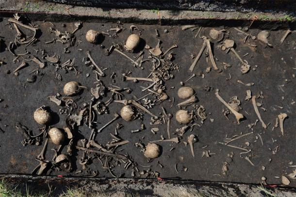 So far, bones from more than 100 individuals have been discovered on the battlefield. (©: Stefan Sauer / Tollense Valley Project)
