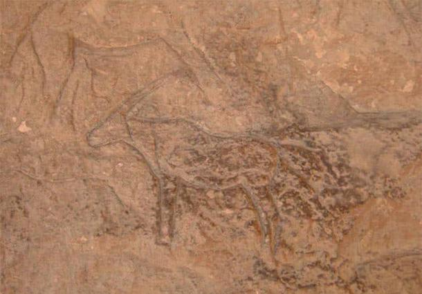 The carvings included animals such as camels, deer, mules, mountain goats and donkeys. Photo courtesy Ministry of Antiquities