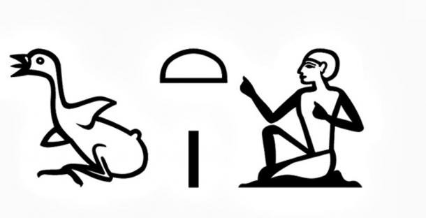 """The term """"chaty"""" or vizier in hieroglyphic writing."""