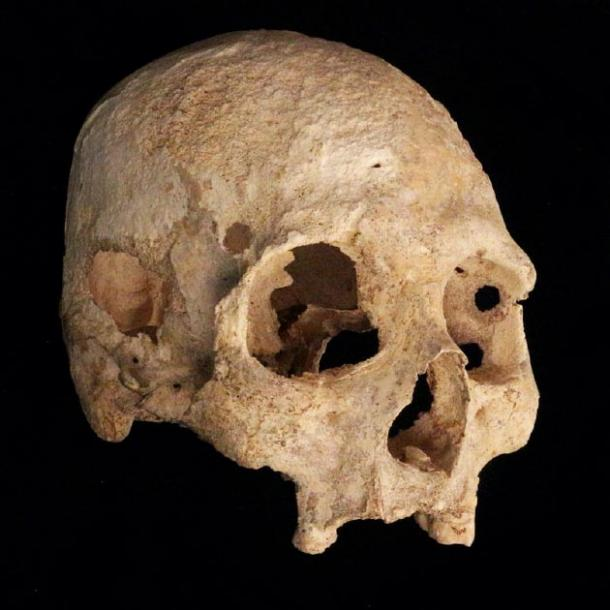 Close-up of skull found in the Chan Hol cenote cave. (Jerónimo Avilés Olguín / Heidelberg University)