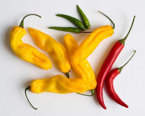 A collection of spicy chili peppers